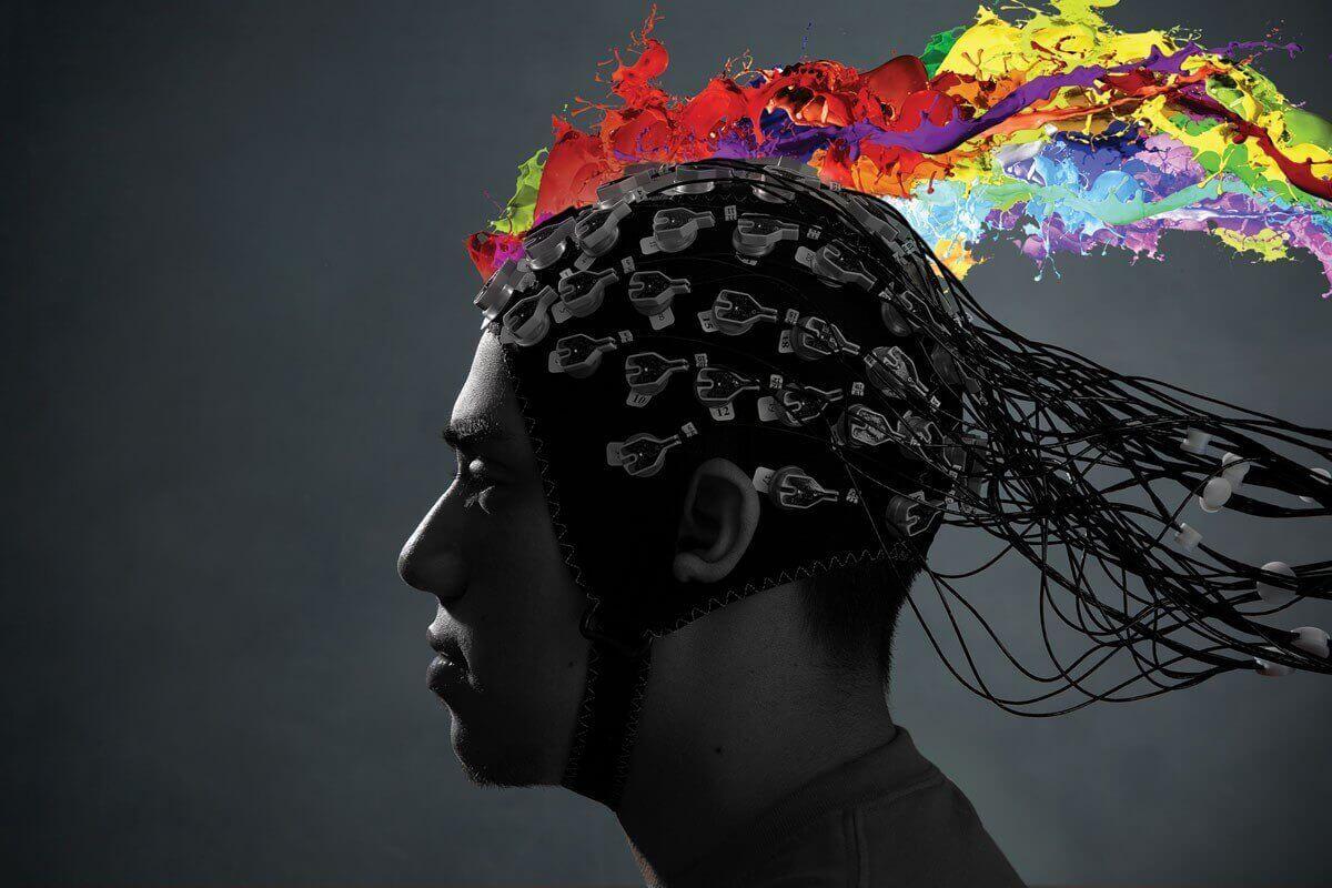 شروع خلاقیت ، دلبستگی و کارکرد مغز